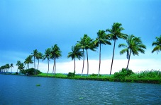 Kerala tourist spots Kumarakom-Backwaters